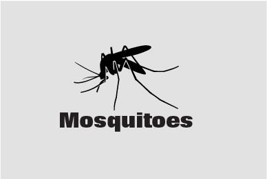 Mosquito Sprays