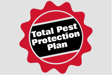 Pest Protection Plans