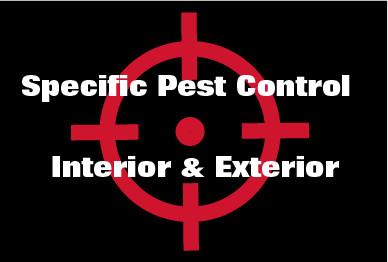 Specific Pest Control